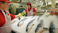 Лед и вода по цене рыбной продукции